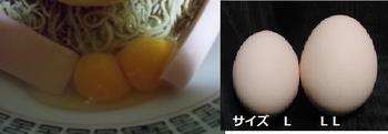 新二黄卵.png