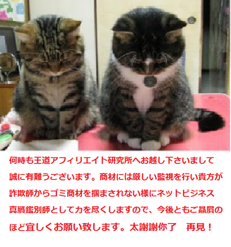 twin cats.png