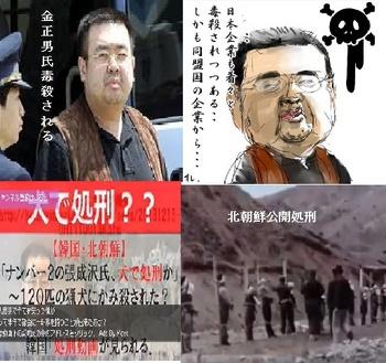 合成北朝鮮.jpg